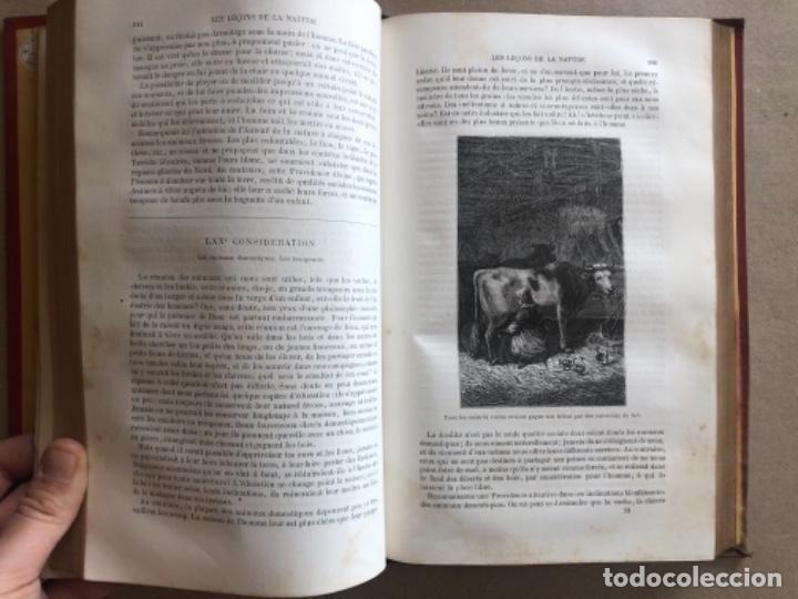 Libros antiguos: LES LEÇONS DE LA NATURE. POR LOUIS COUSIN-DESPRÉAUX. ED. TOURS, 1885. EN FRANCÉS. - Foto 7 - 128893839