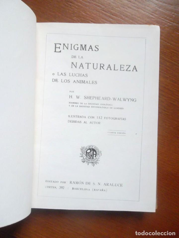 Libros antiguos: Enigmas de la naturaleza o las luchas de los animales, impecable H. W. Shepheard-Walwyng ca 1930 - Foto 2 - 128998407