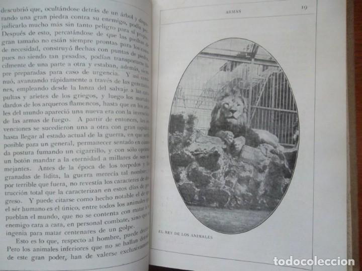 Libros antiguos: Enigmas de la naturaleza o las luchas de los animales, impecable H. W. Shepheard-Walwyng ca 1930 - Foto 3 - 128998407