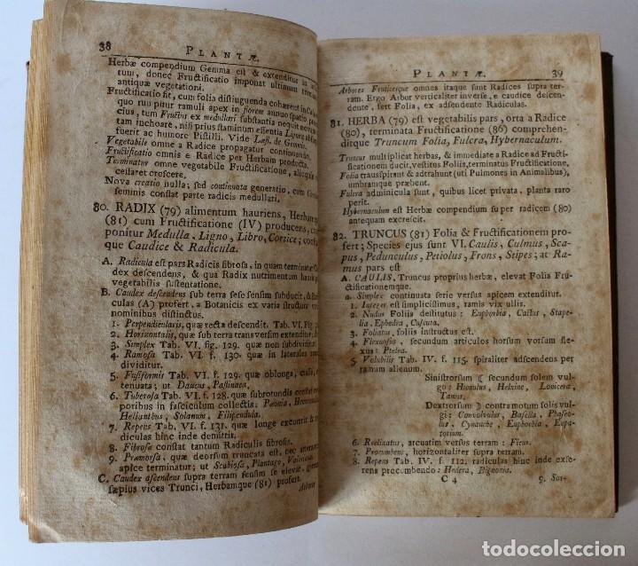 Libros antiguos: PHILOSOPHIA BOTANICA IN QUA EXPLICANTUR FUNDAMENTA BOTANICA-SEGUNDA EDICION 1783 - Foto 2 - 129611931