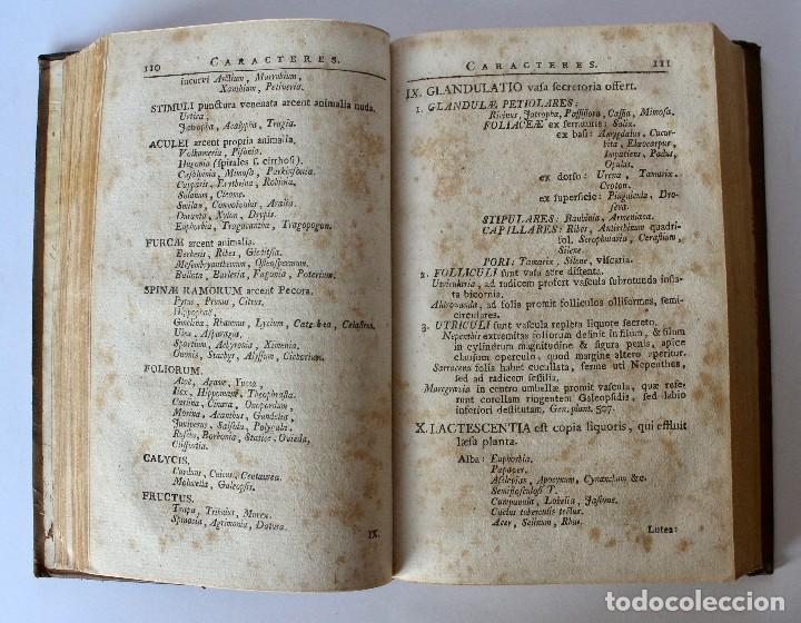 Libros antiguos: PHILOSOPHIA BOTANICA IN QUA EXPLICANTUR FUNDAMENTA BOTANICA-SEGUNDA EDICION 1783 - Foto 3 - 129611931