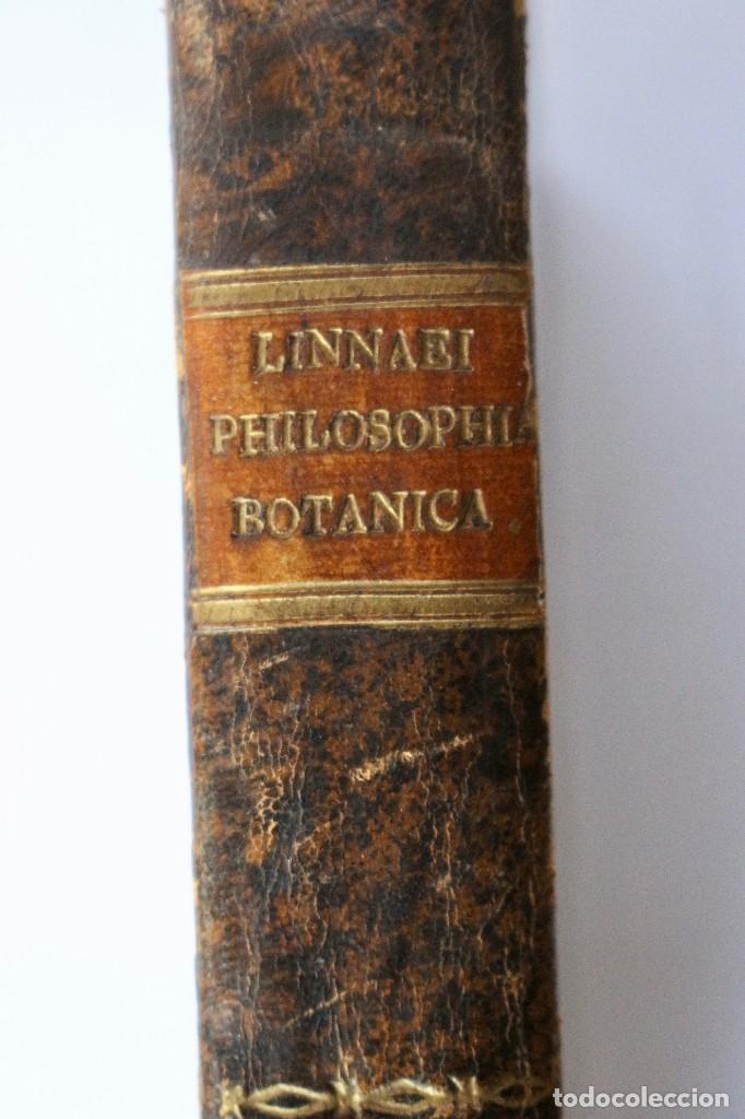 Libros antiguos: PHILOSOPHIA BOTANICA IN QUA EXPLICANTUR FUNDAMENTA BOTANICA-SEGUNDA EDICION 1783 - Foto 4 - 129611931