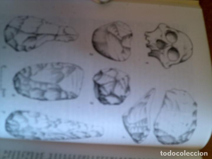 Libros antiguos: libro la prehistoria por andre leroi-gourhan editorial labor 1993 ilustrado 332 paginas - Foto 2 - 131354162