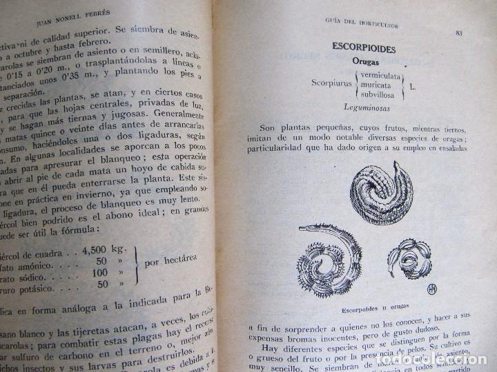 Libros antiguos: GUÍA DEL HORTICULTOR. NOCIONES PARA EL CULTIVO DE HORTALIZAS Y FORRAJES. JUAN NONELL FEBRÉS, S/F. - Foto 5 - 131990966