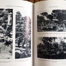 Libros antiguos: FLORA, MAPA Y SUELOS FORESTALES ESPAÑOLES; RESINAS; HIDRÁULICA TORRENCIAL… (1930) LÁMINAS. Lote 133210778