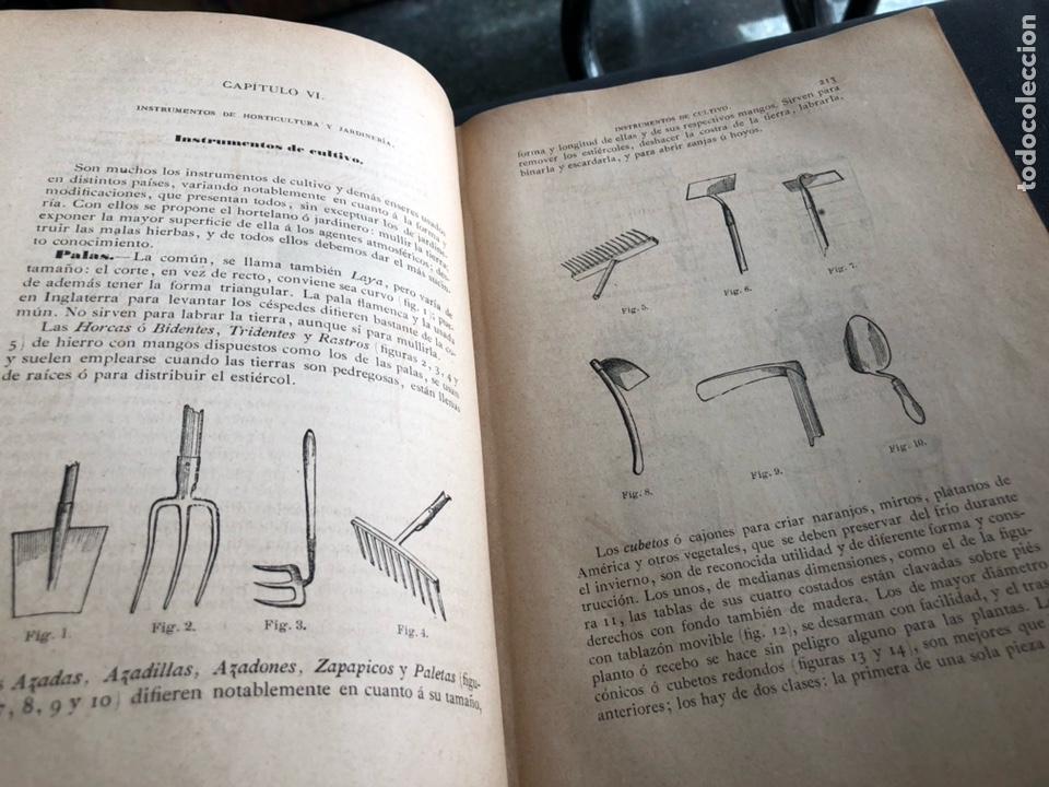 Libros antiguos: Novísima guía del Hortelano, Jardinero y Arbolista. Cortes 1885 - Foto 4 - 133526026