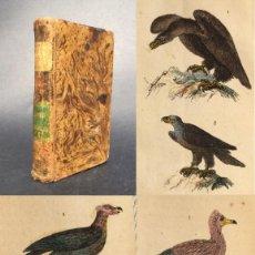 Libros antiguos: 1841 - OBRAS DE BUFFON - ORNITOLOGIA - HISTORIA DE LAS AVES - GRABADOS COLOREADOS - AGUILA - BUITRE. Lote 133809070