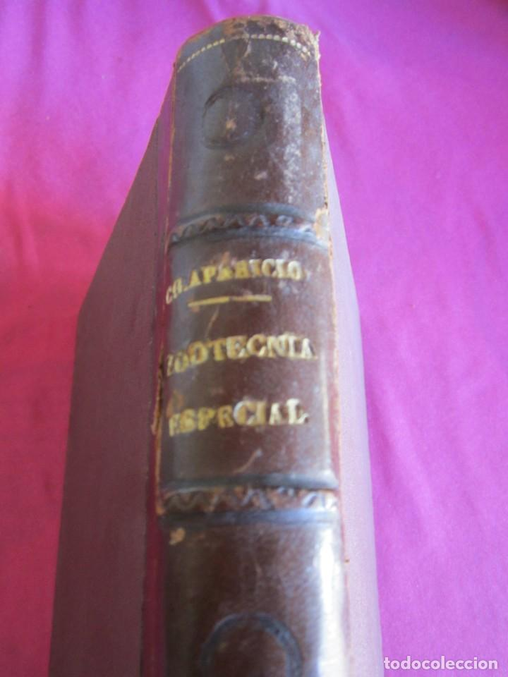 Libros antiguos: ZOOTECNIA ESPECIAL. ETNOLOGIA COMPENDIADA. GUMERSINDO APARICIO SANCHEZ - Foto 2 - 135309382