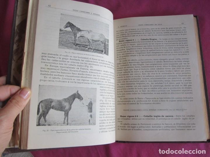 Libros antiguos: ZOOTECNIA ESPECIAL. ETNOLOGIA COMPENDIADA. GUMERSINDO APARICIO SANCHEZ - Foto 4 - 135309382