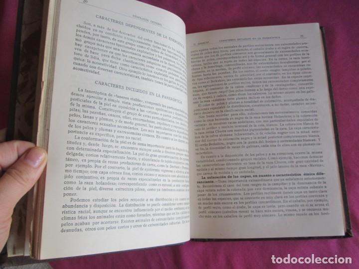Libros antiguos: ZOOTECNIA ESPECIAL. ETNOLOGIA COMPENDIADA. GUMERSINDO APARICIO SANCHEZ - Foto 5 - 135309382