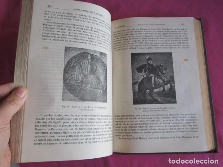 Libros antiguos: ZOOTECNIA ESPECIAL. ETNOLOGIA COMPENDIADA. GUMERSINDO APARICIO SANCHEZ - Foto 12 - 135309382