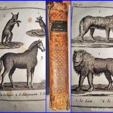 Libros antiguos: AÑO 1820: EL BUFFON DE LOS NIÑOS. HISTORIA NATURAL. ILUSTRACIONES DE ANIMALES. SIGLO XVIII.. Lote 135951550