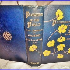 Libros antiguos: AÑO 1894: FLORES DEL CAMPO. PRECIOSO LIBRO DEL SIGLO XIX CON ILUSTRACIONES DE FLORES.. Lote 135997070