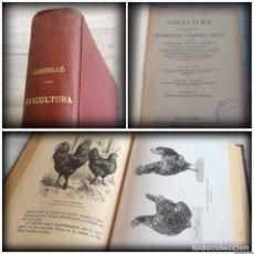 Libros antiguos: AVICULTURA (1916), CURSO COMPLETO DE GALLINOCULTURA E INDUSTRIAS ANEXAS - DR. SALVADOR CASTELLÓ. Lote 137999194