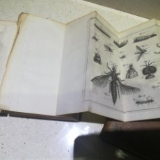 Libros antiguos: MEMOIRES POUR SERVIR A L,HITOIRE DES INSECTES 1741 EN 2 TOMOS. Lote 139903422