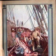 Libros antiguos: J. RICHARD : LE MUSÉE OCÉANOGRAPHIQUE DE MONACO GUIDE ILLUSTRÉ (1923). Lote 141235594