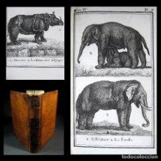 Libros antiguos: AÑO 1787 BUFFON HISTORIA NATURAL 10 GRABADOS A PLENA PÁGINA RINOCERONTE ELEFANTE ZOOLOGÍA ANIMALES. Lote 106539143