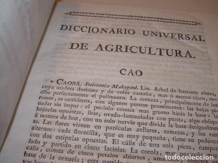 Libros antiguos: LIBRO TAPAS PIEL.DICCIONARIO DE AGRICULTURA,MEDICINA RURAL, VETERINARIA Y BOTANICA.AÑO 1799 - Foto 4 - 142796066