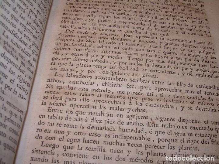 Libros antiguos: LIBRO TAPAS PIEL.DICCIONARIO DE AGRICULTURA,MEDICINA RURAL, VETERINARIA Y BOTANICA.AÑO 1799 - Foto 7 - 142796066