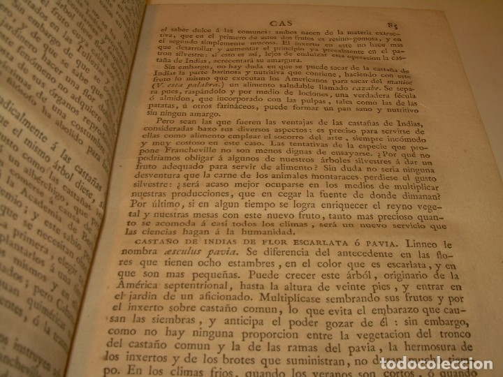 Libros antiguos: LIBRO TAPAS PIEL.DICCIONARIO DE AGRICULTURA,MEDICINA RURAL, VETERINARIA Y BOTANICA.AÑO 1799 - Foto 13 - 142796066