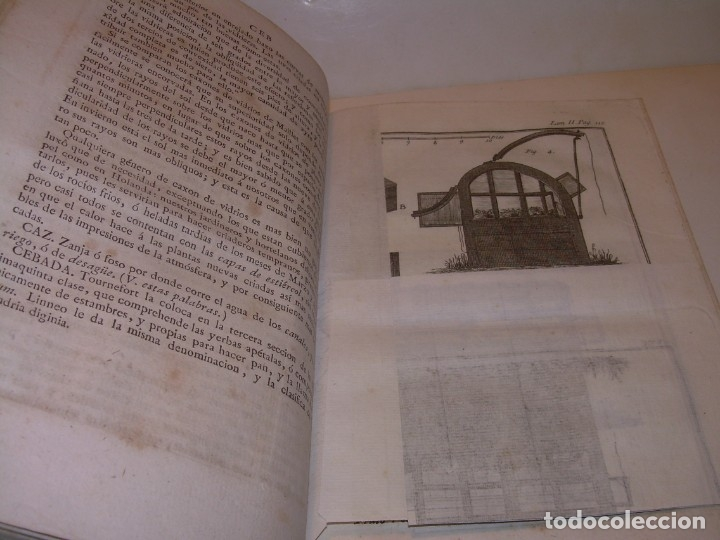 Libros antiguos: LIBRO TAPAS PIEL.DICCIONARIO DE AGRICULTURA,MEDICINA RURAL, VETERINARIA Y BOTANICA.AÑO 1799 - Foto 15 - 142796066