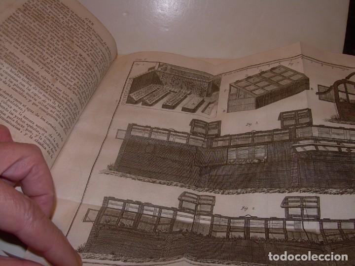 Libros antiguos: LIBRO TAPAS PIEL.DICCIONARIO DE AGRICULTURA,MEDICINA RURAL, VETERINARIA Y BOTANICA.AÑO 1799 - Foto 16 - 142796066