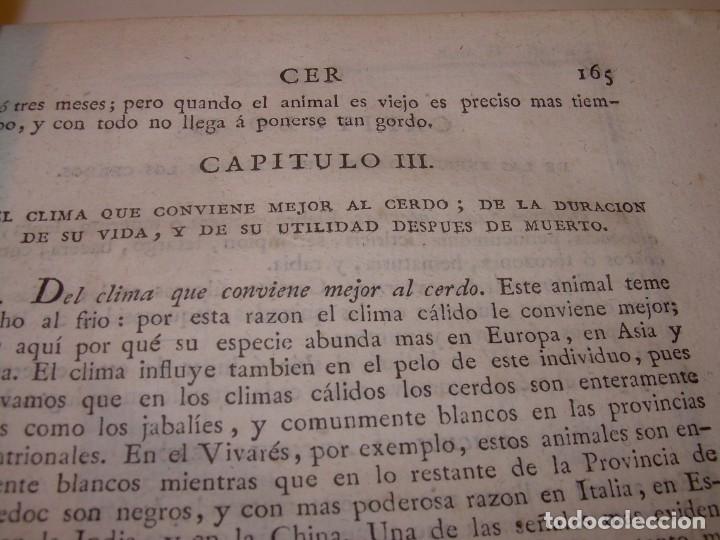 Libros antiguos: LIBRO TAPAS PIEL.DICCIONARIO DE AGRICULTURA,MEDICINA RURAL, VETERINARIA Y BOTANICA.AÑO 1799 - Foto 18 - 142796066