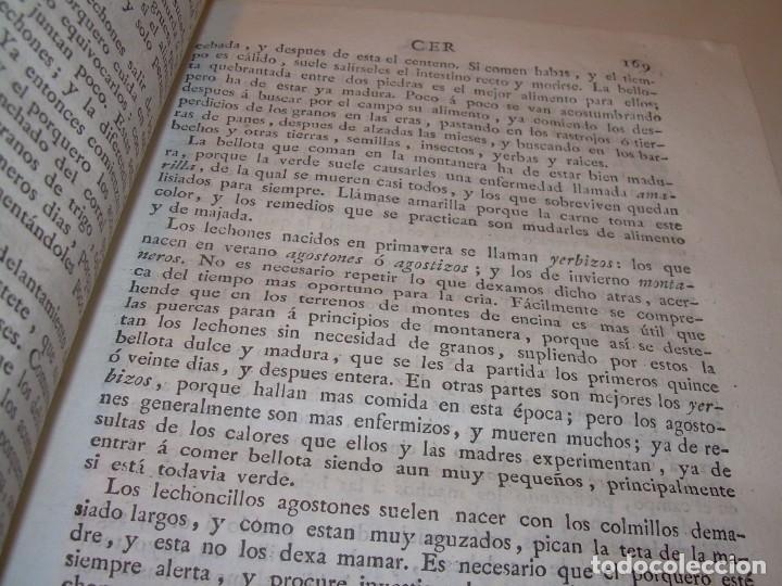 Libros antiguos: LIBRO TAPAS PIEL.DICCIONARIO DE AGRICULTURA,MEDICINA RURAL, VETERINARIA Y BOTANICA.AÑO 1799 - Foto 21 - 142796066