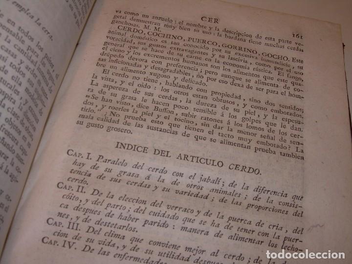 Libros antiguos: LIBRO TAPAS PIEL.DICCIONARIO DE AGRICULTURA,MEDICINA RURAL, VETERINARIA Y BOTANICA.AÑO 1799 - Foto 24 - 142796066