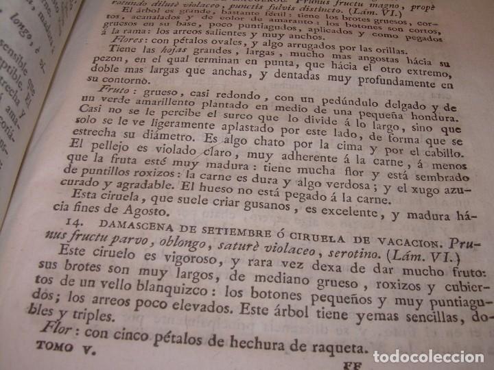 Libros antiguos: LIBRO TAPAS PIEL.DICCIONARIO DE AGRICULTURA,MEDICINA RURAL, VETERINARIA Y BOTANICA.AÑO 1799 - Foto 26 - 142796066
