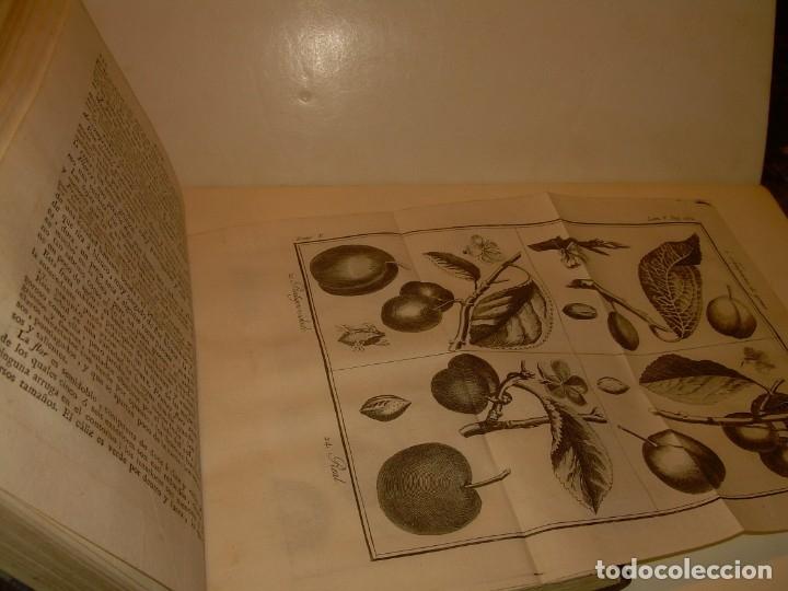 Libros antiguos: LIBRO TAPAS PIEL.DICCIONARIO DE AGRICULTURA,MEDICINA RURAL, VETERINARIA Y BOTANICA.AÑO 1799 - Foto 28 - 142796066