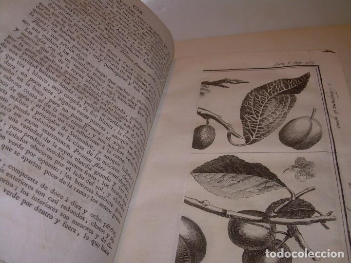 Libros antiguos: LIBRO TAPAS PIEL.DICCIONARIO DE AGRICULTURA,MEDICINA RURAL, VETERINARIA Y BOTANICA.AÑO 1799 - Foto 27 - 142796066