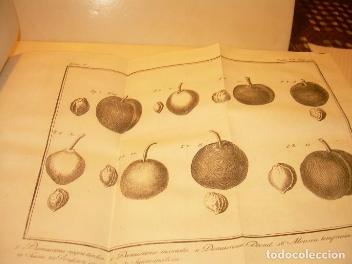 Libros antiguos: LIBRO TAPAS PIEL.DICCIONARIO DE AGRICULTURA,MEDICINA RURAL, VETERINARIA Y BOTANICA.AÑO 1799 - Foto 32 - 142796066