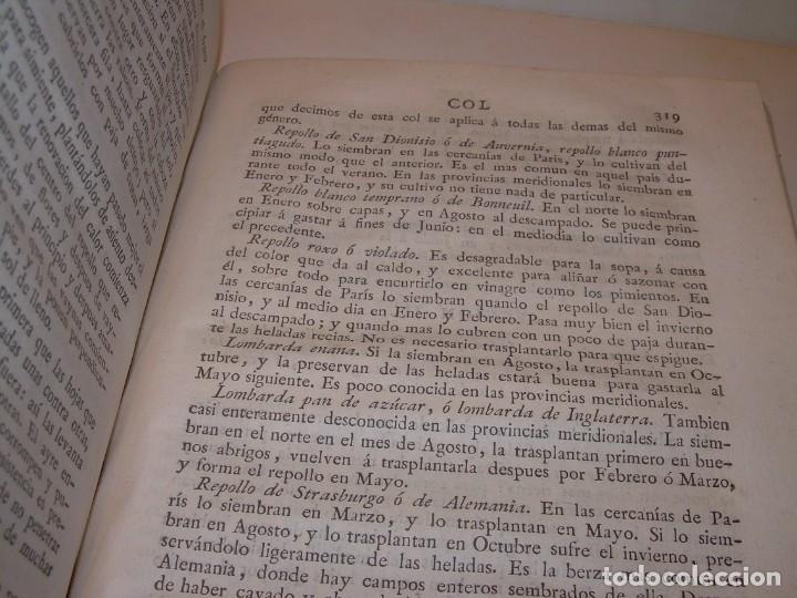 Libros antiguos: LIBRO TAPAS PIEL.DICCIONARIO DE AGRICULTURA,MEDICINA RURAL, VETERINARIA Y BOTANICA.AÑO 1799 - Foto 37 - 142796066