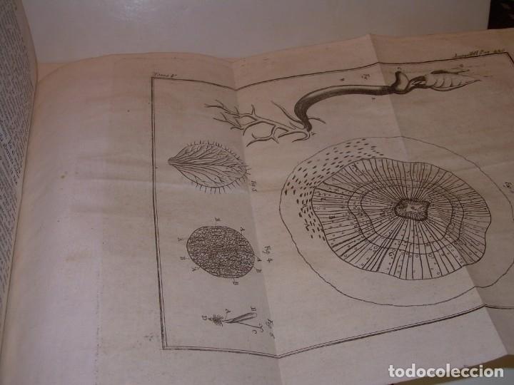 Libros antiguos: LIBRO TAPAS PIEL.DICCIONARIO DE AGRICULTURA,MEDICINA RURAL, VETERINARIA Y BOTANICA.AÑO 1799 - Foto 38 - 142796066