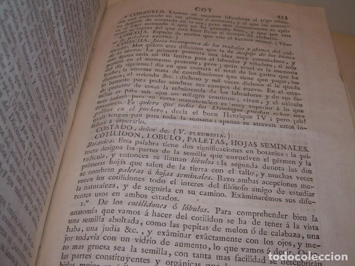 Libros antiguos: LIBRO TAPAS PIEL.DICCIONARIO DE AGRICULTURA,MEDICINA RURAL, VETERINARIA Y BOTANICA.AÑO 1799 - Foto 39 - 142796066
