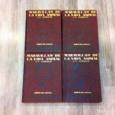 Libros antiguos: MARAVILLAS DE LA VIDA ANIMAL (4 TOMOS) J.A. HAMMERTON. ED. JOAQUÍN GIL, 1930. BARCELONA.. Lote 142953930