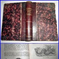 Libros antiguos: HISTORIA NATURAL. ELEGANTE LIBRO DEL SIGLO XIX. ILUSTRADO.. Lote 143094782