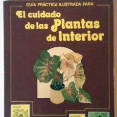 Libros antiguos: EL CUIDADO DE LAS PLANTAS DE INTERIOR, GUIA PRACTICA - EDITORIAL BLUME 1982. Lote 143129486