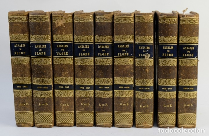 ANNALES DE FLORE ET DE POMONE OU JOURNAL DES JARDINS 1833-1841.ED.BOUSSELON, PARIS-9 TOMOS (Libros Antiguos, Raros y Curiosos - Ciencias, Manuales y Oficios - Bilogía y Botánica)