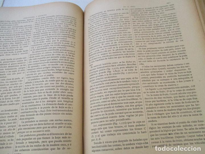 Libros antiguos: NOVÍSIMO TRATADO TEÓRICO-PRÁCTICO DE AGRICULTURA Y ZOOTECNIA - TOMO 3º .- LIBROS VI Y VII. - Foto 8 - 23880928
