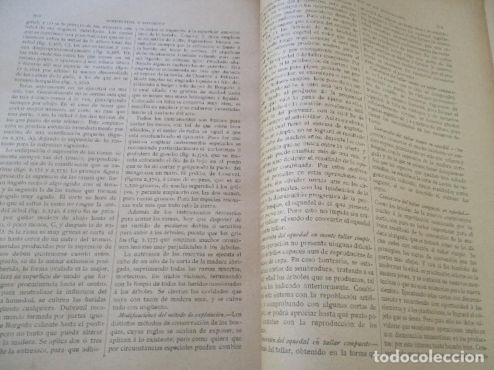 Libros antiguos: NOVÍSIMO TRATADO TEÓRICO-PRÁCTICO DE AGRICULTURA Y ZOOTECNIA - TOMO 3º .- LIBROS VI Y VII. - Foto 10 - 23880928