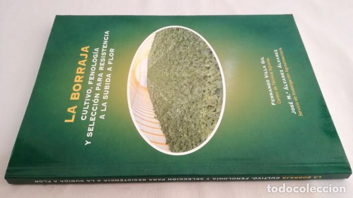 LA BORRAJA CULTIVO FENOLOGÍA SELECCIÓN PARA RESISTENCIA SUBIDA FLOR -AGRICULTURA GANADERÍA ARAGON (Libros Antiguos, Raros y Curiosos - Ciencias, Manuales y Oficios - Bilogía y Botánica)