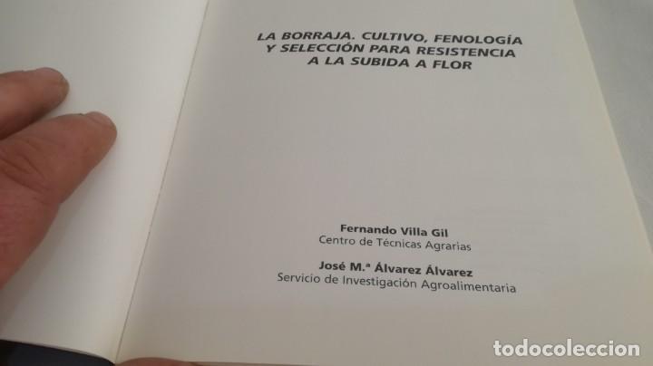 Libros antiguos: LA BORRAJA CULTIVO FENOLOGÍA SELECCIÓN PARA RESISTENCIA SUBIDA FLOR -AGRICULTURA GANADERÍA ARAGON - Foto 5 - 195354396