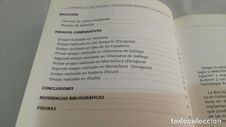 Libros antiguos: LA BORRAJA CULTIVO FENOLOGÍA SELECCIÓN PARA RESISTENCIA SUBIDA FLOR -AGRICULTURA GANADERÍA ARAGON - Foto 8 - 195354396