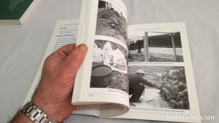 Libros antiguos: LA BORRAJA CULTIVO FENOLOGÍA SELECCIÓN PARA RESISTENCIA SUBIDA FLOR -AGRICULTURA GANADERÍA ARAGON - Foto 9 - 195354396