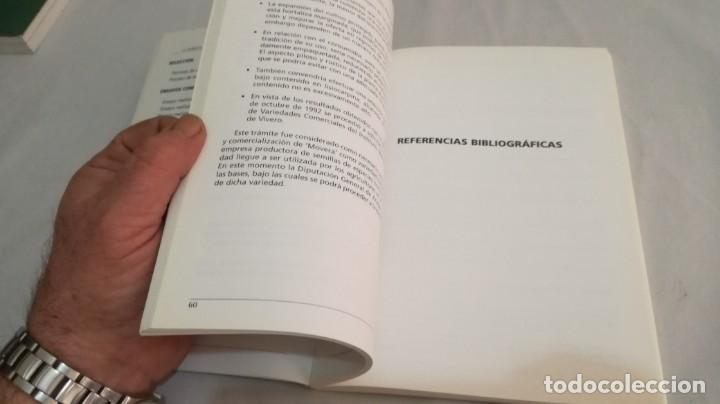 Libros antiguos: LA BORRAJA CULTIVO FENOLOGÍA SELECCIÓN PARA RESISTENCIA SUBIDA FLOR -AGRICULTURA GANADERÍA ARAGON - Foto 13 - 195354396