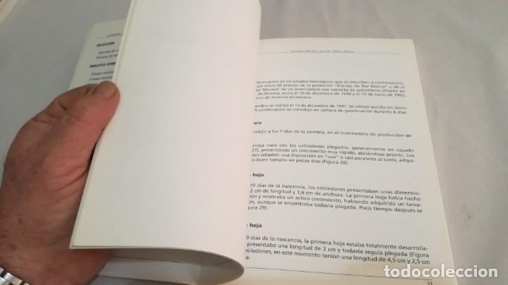 Libros antiguos: LA BORRAJA CULTIVO FENOLOGÍA SELECCIÓN PARA RESISTENCIA SUBIDA FLOR -AGRICULTURA GANADERÍA ARAGON - Foto 2 - 195354396