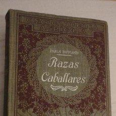 Libros antiguos: PABLO DIFFLOTH.RAZAS CABALLARES.ZOOTECNIA.ENCICLOPEDIA AGRICOLA.SALVAT 1927. Lote 144510998