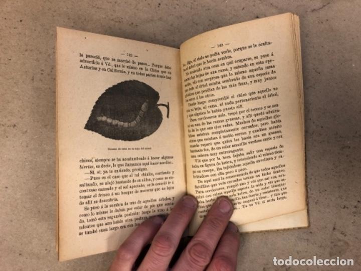 Libros antiguos: PRINCIPIOS DE ZOOTECNIA (CRIANZA DE LOS ANIMALES RELACIONADOS CON LA AGRICULTURA). JUAN RUIZ Y TARTA - Foto 8 - 146540730